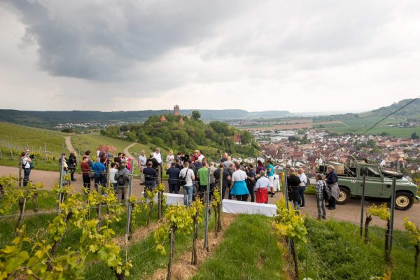 Protec 35 jähriges Jubiläum Weinwanderung 12QC2455
